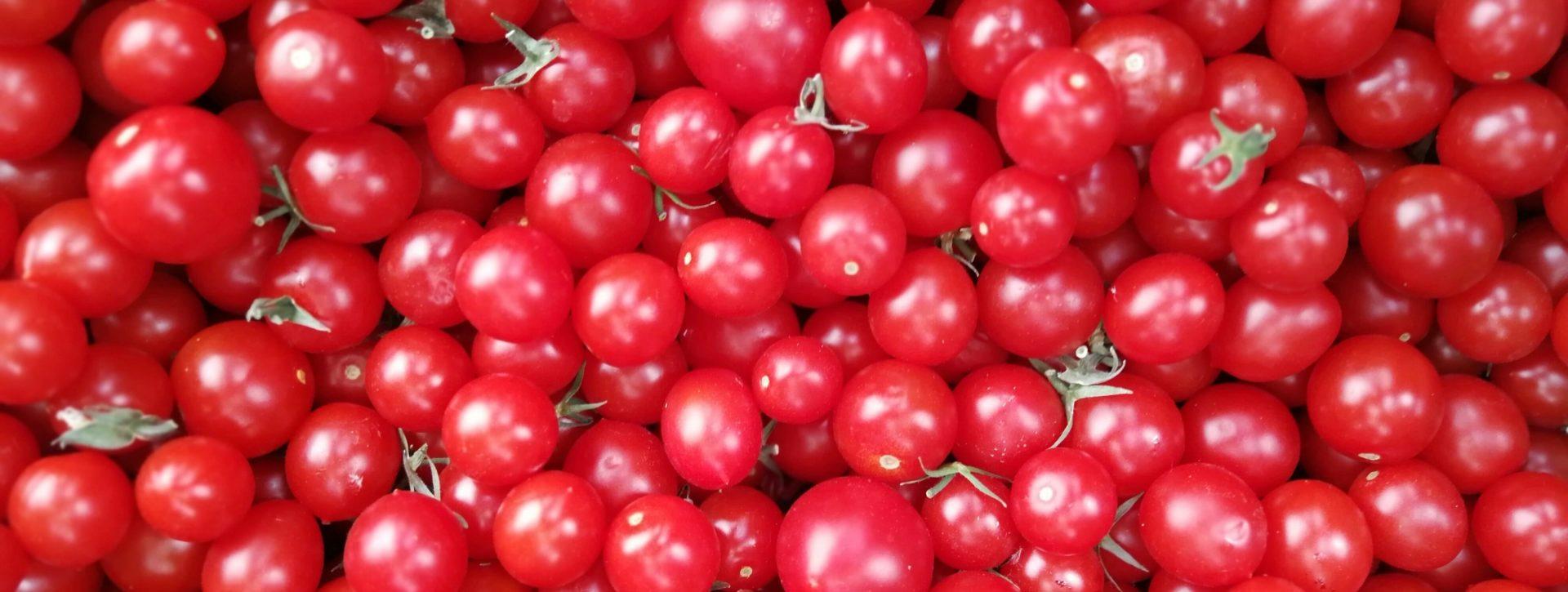 Berühmt Fünf Fakten über Tomaten @SY_94